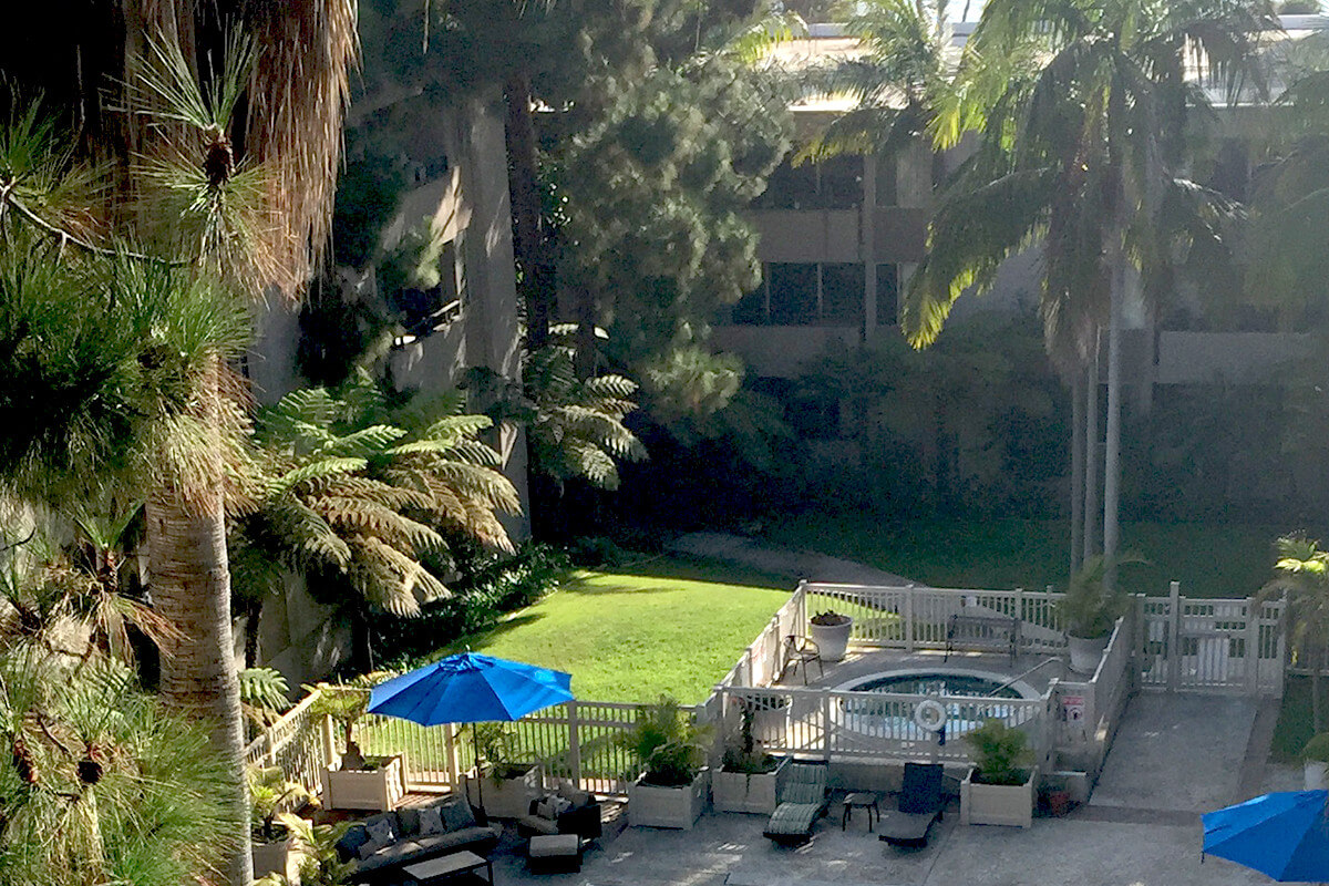 Welcome To The New Website And Blog Page For Los Arboles Apartments