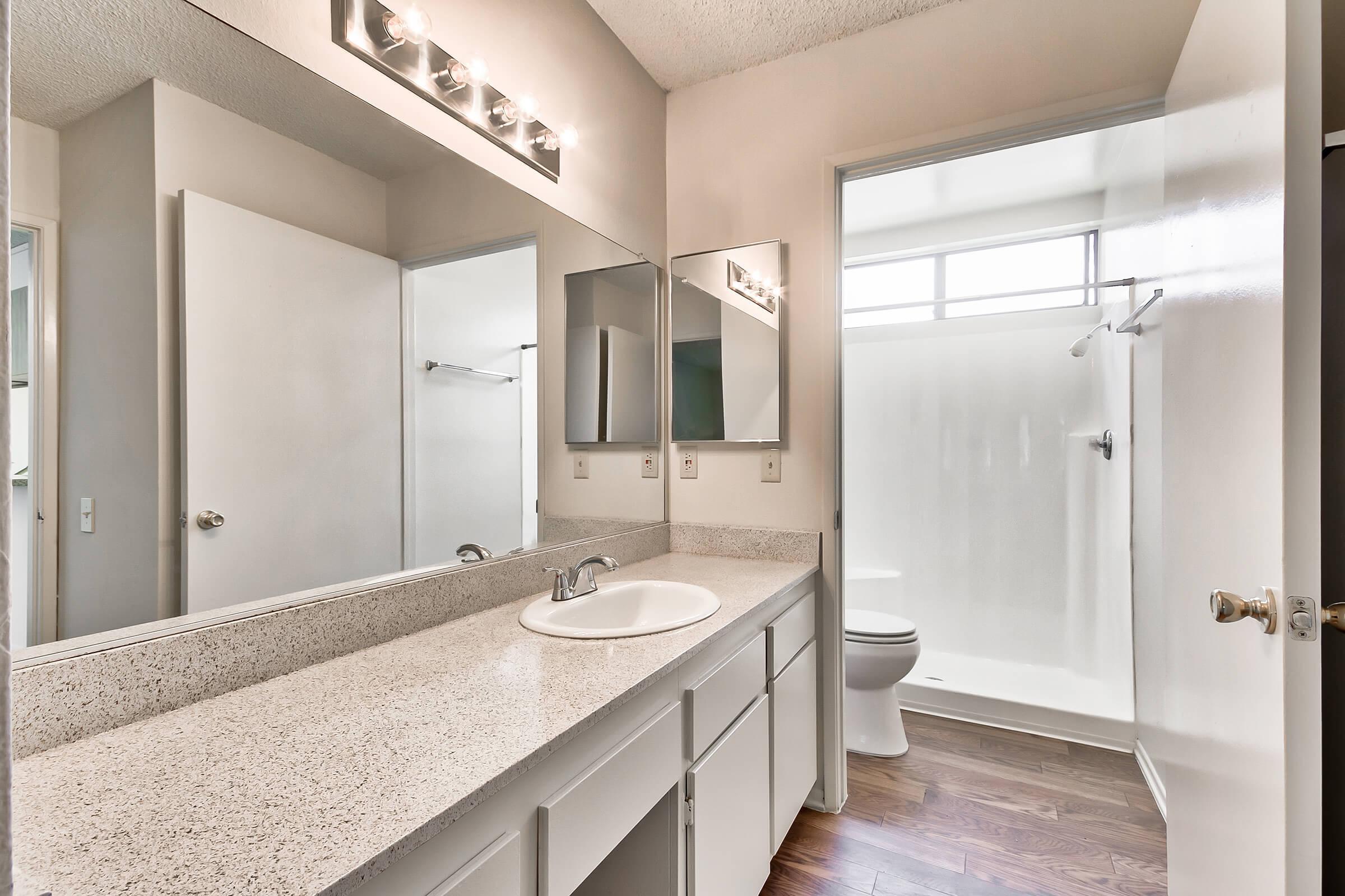 Bathroom_1207-21ST-AVE-NE-HICKORY-NC-28601-1872_HUNTINGTON-PARK-APTS_RPI_II-273044-55.jpg