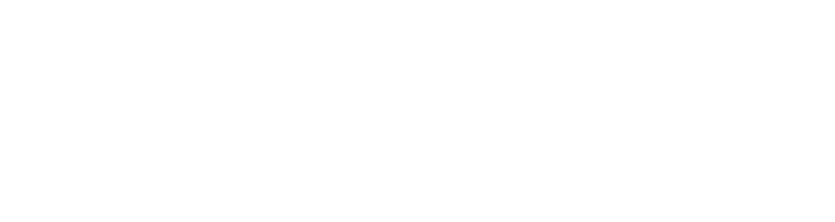 Global Integrity Logo