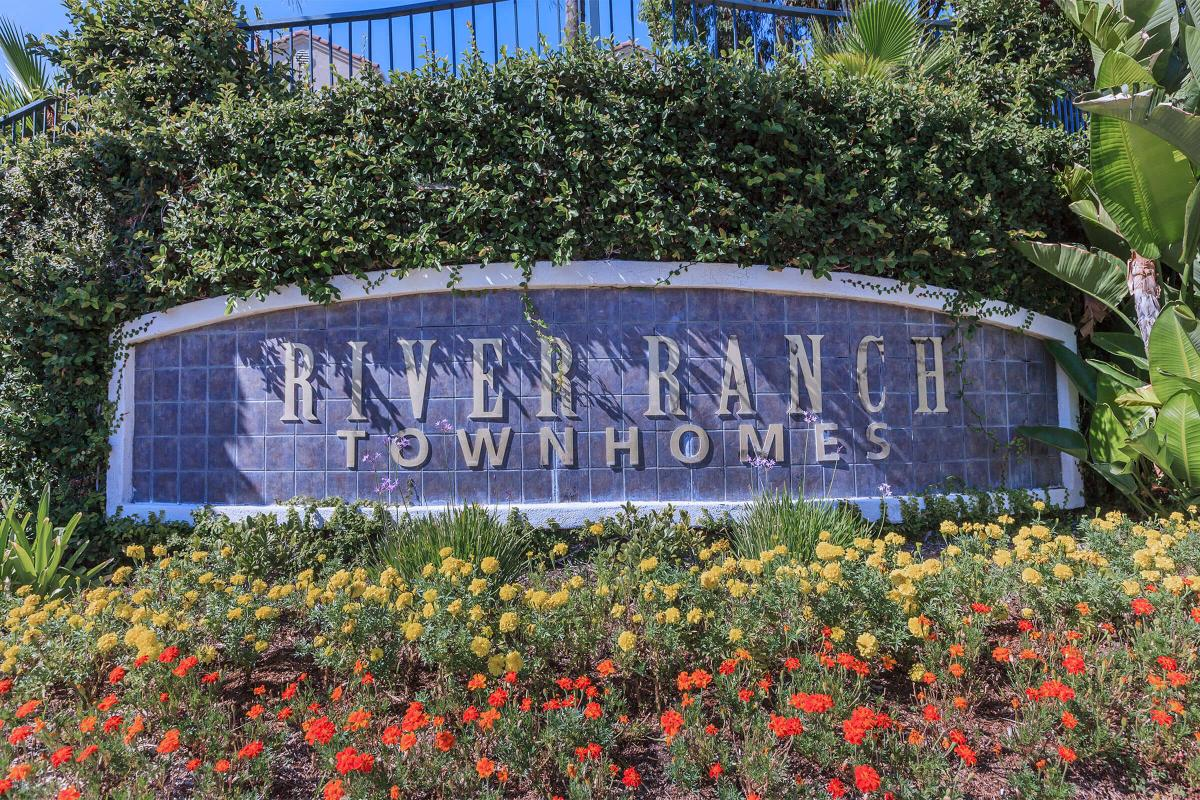 a close up of a flower garden in front of a sign