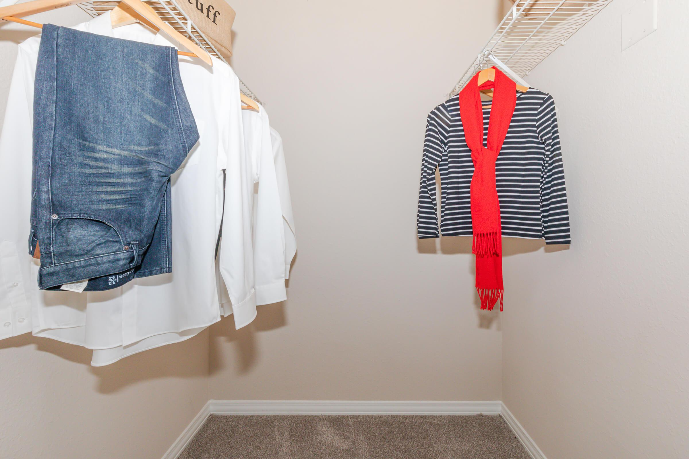 WALK-IN CLOSET IN ONE BEDROOM APARTMENT FOR RENT