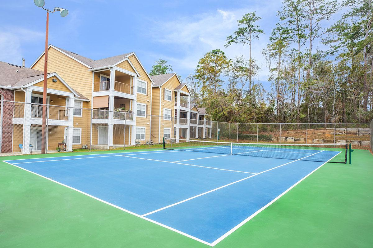 a blue and green court