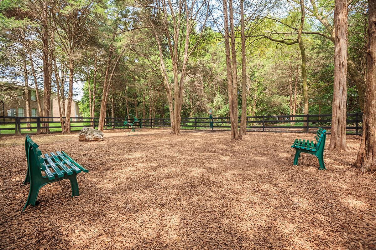 an empty park bench sitting in the middle of a forest