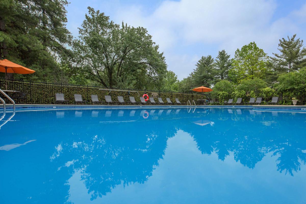 Swimming Pool at Ashwood Cove in Murfreesboro, Tennessee