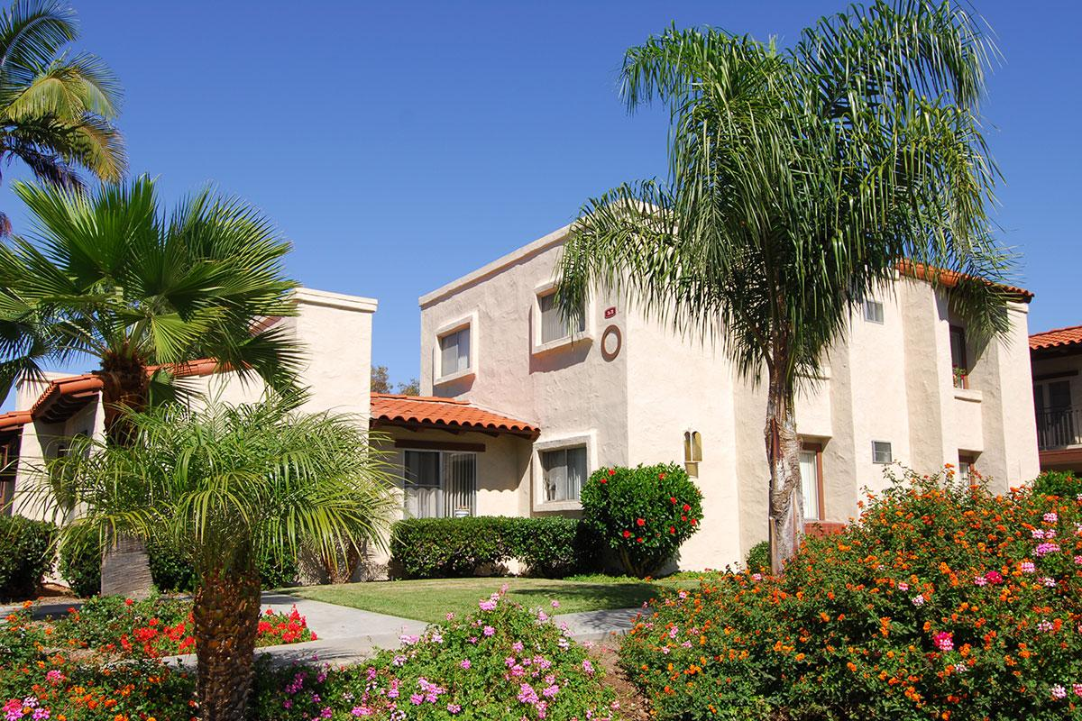 a house with bushes in front of a palm tree