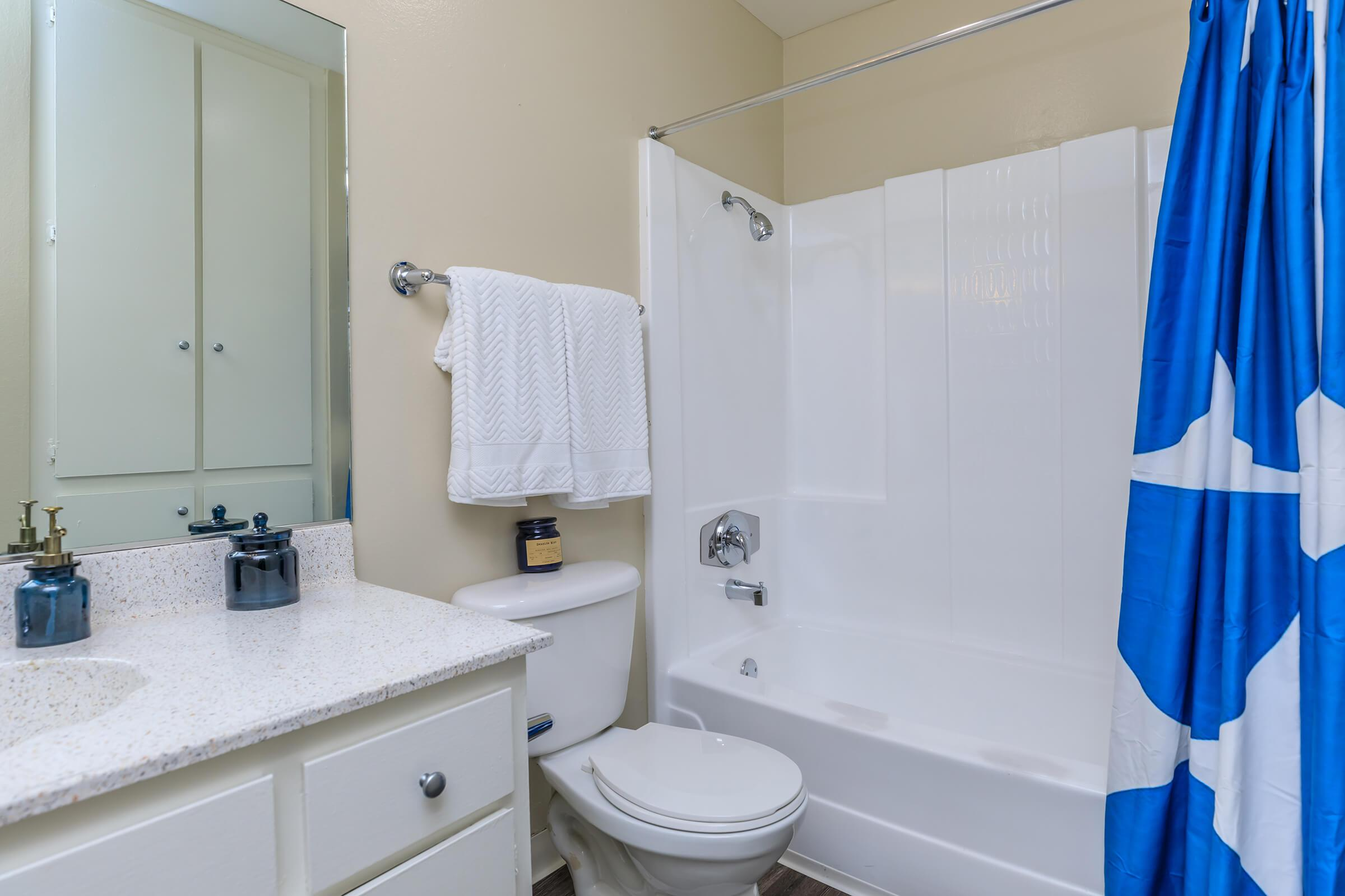 Bathroom with blue and white shower curtain
