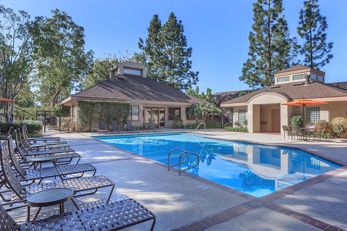 westridge apartment homes amenities