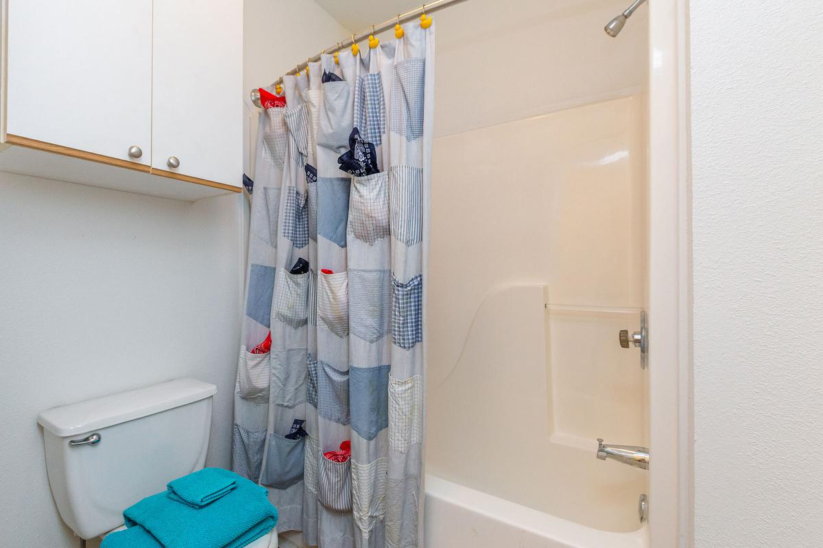a blue and white shower curtain