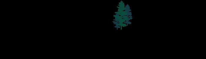Vernon Vista Logo