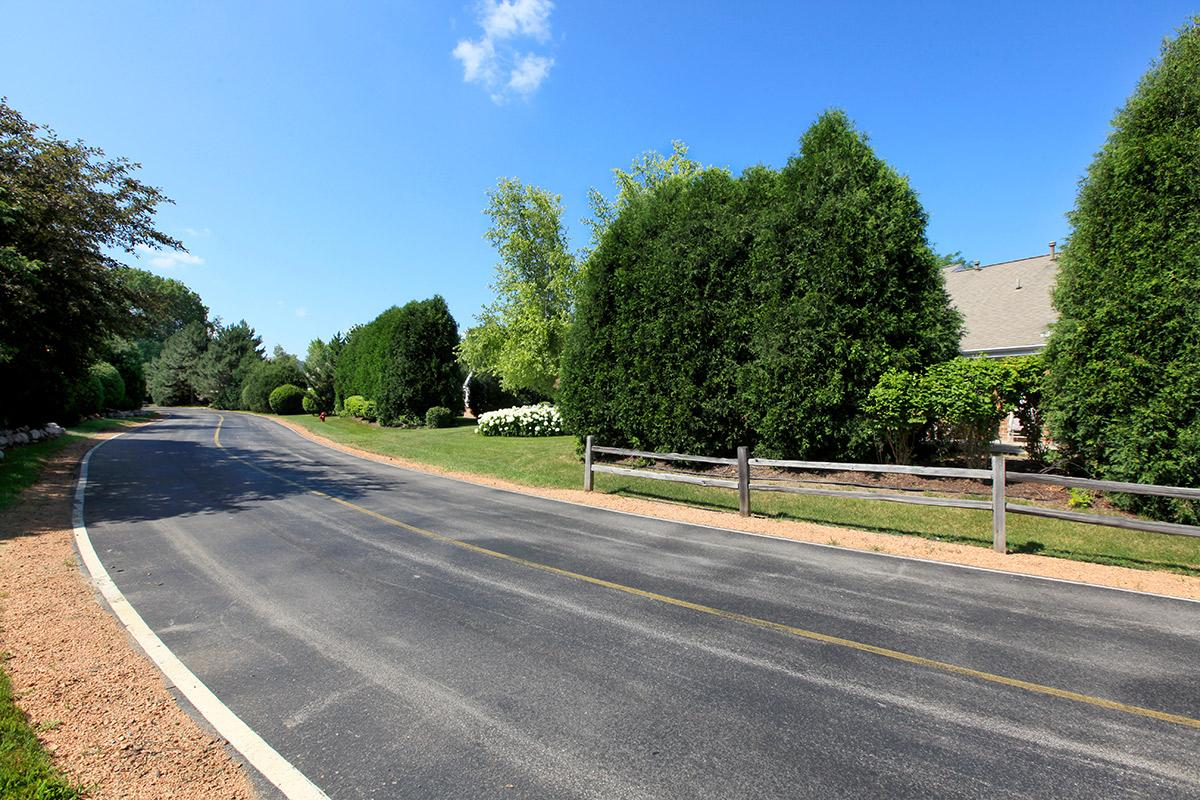 an empty road with trees on the side of the street
