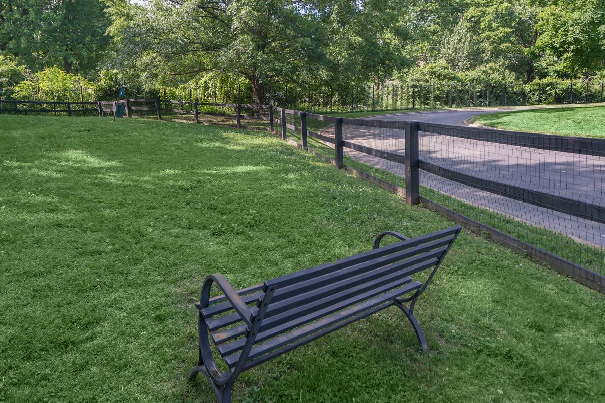 an empty park bench sitting in the grass