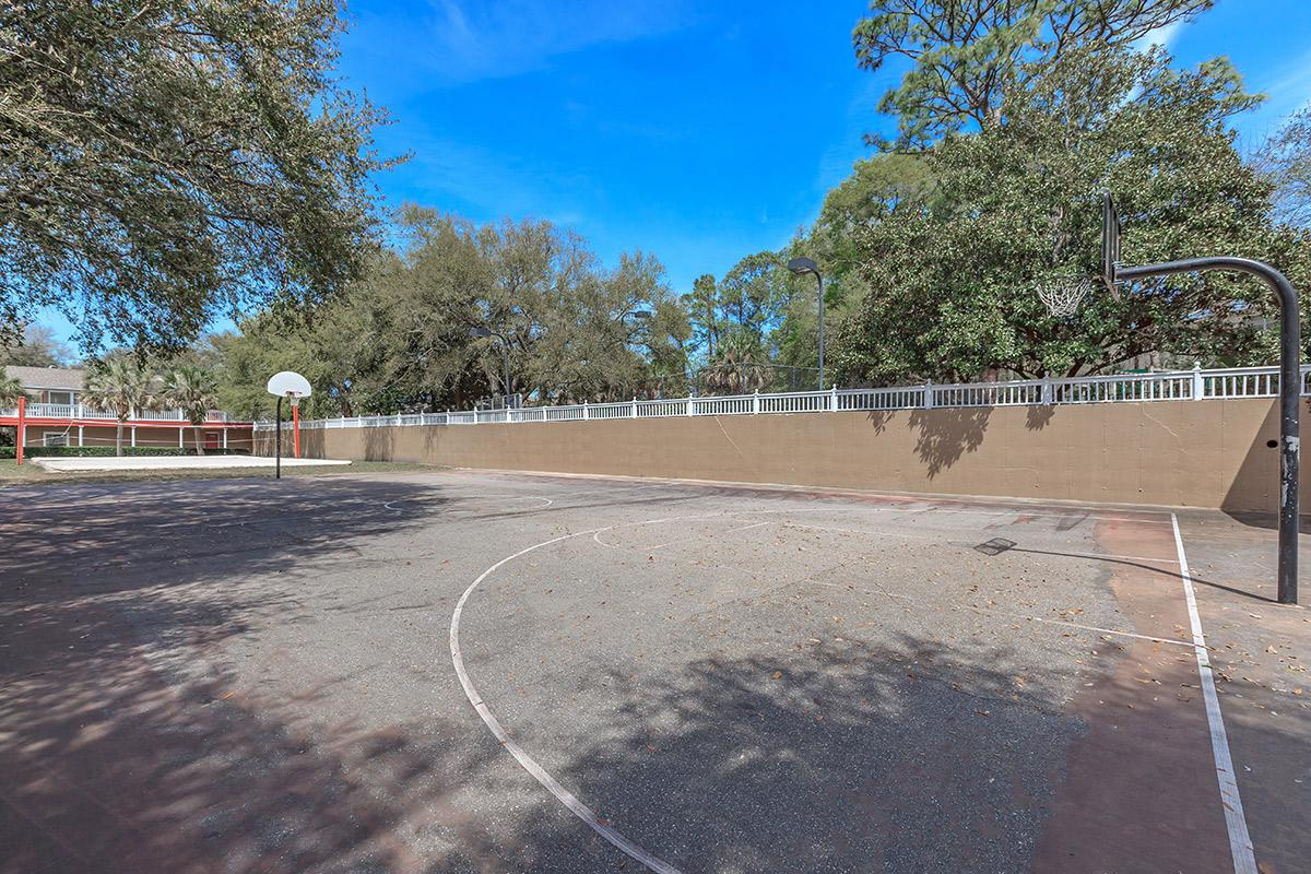 a close up of a basketball court in the middle of a dirt road