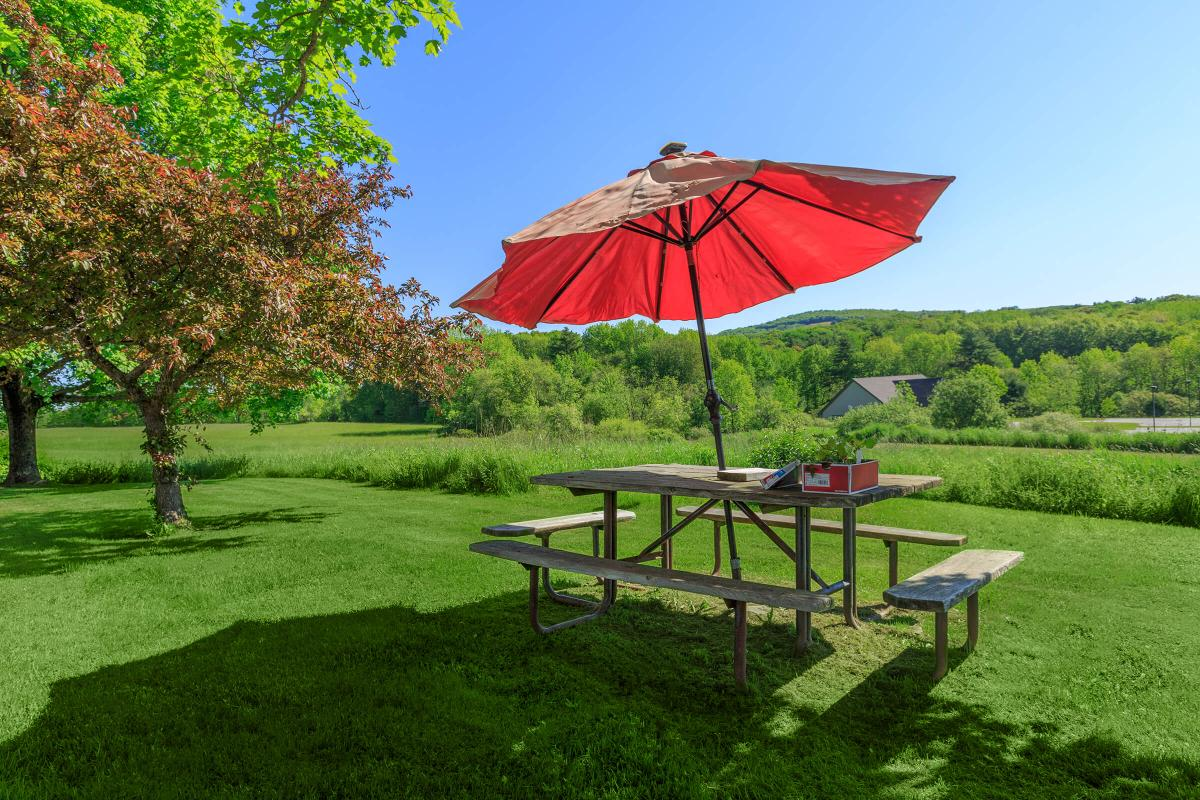 a red umbrella sitting on top of a lush green field