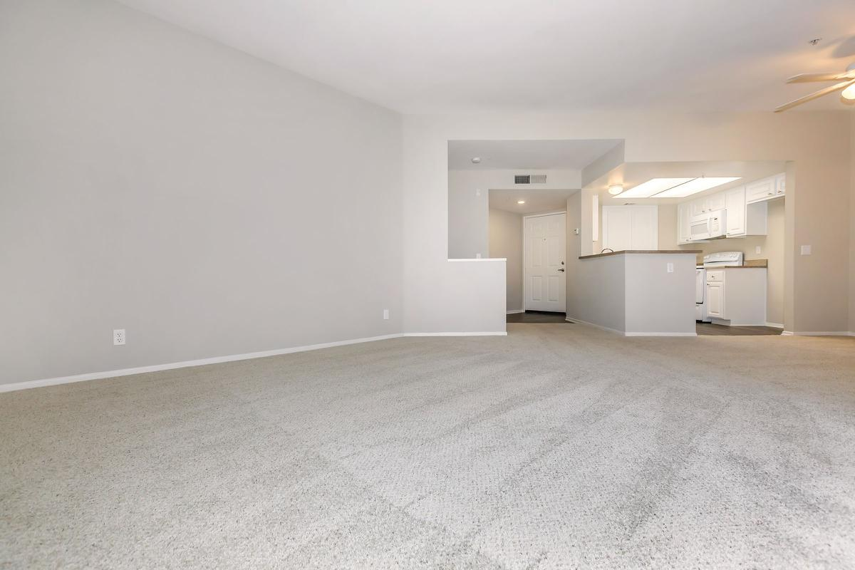 Living room and dining room with carpet