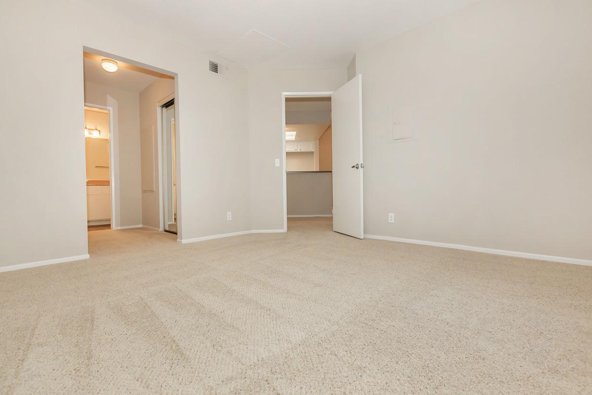 Bedroom with carpet and open bathroom door