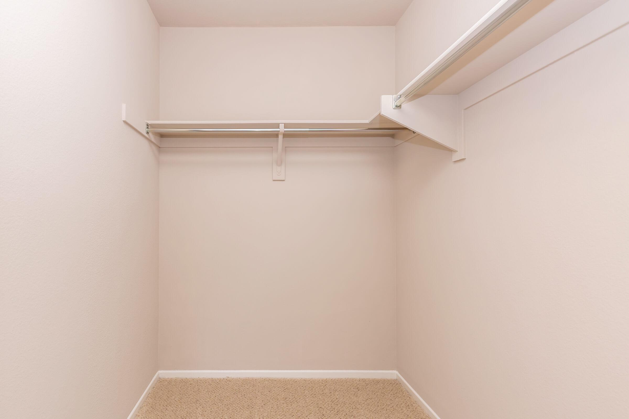 Walk-in closet with carpet