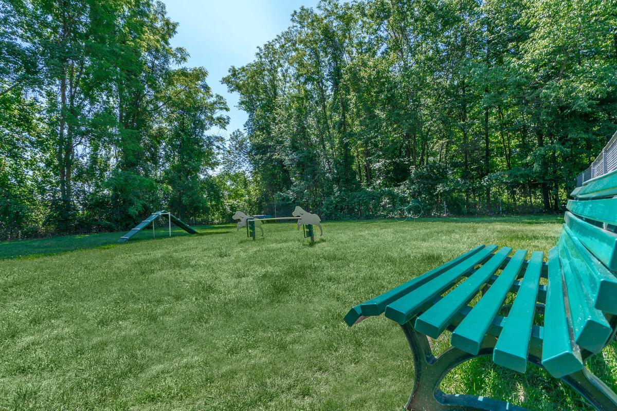 a couple of lawn chairs sitting on top of a bench in a park