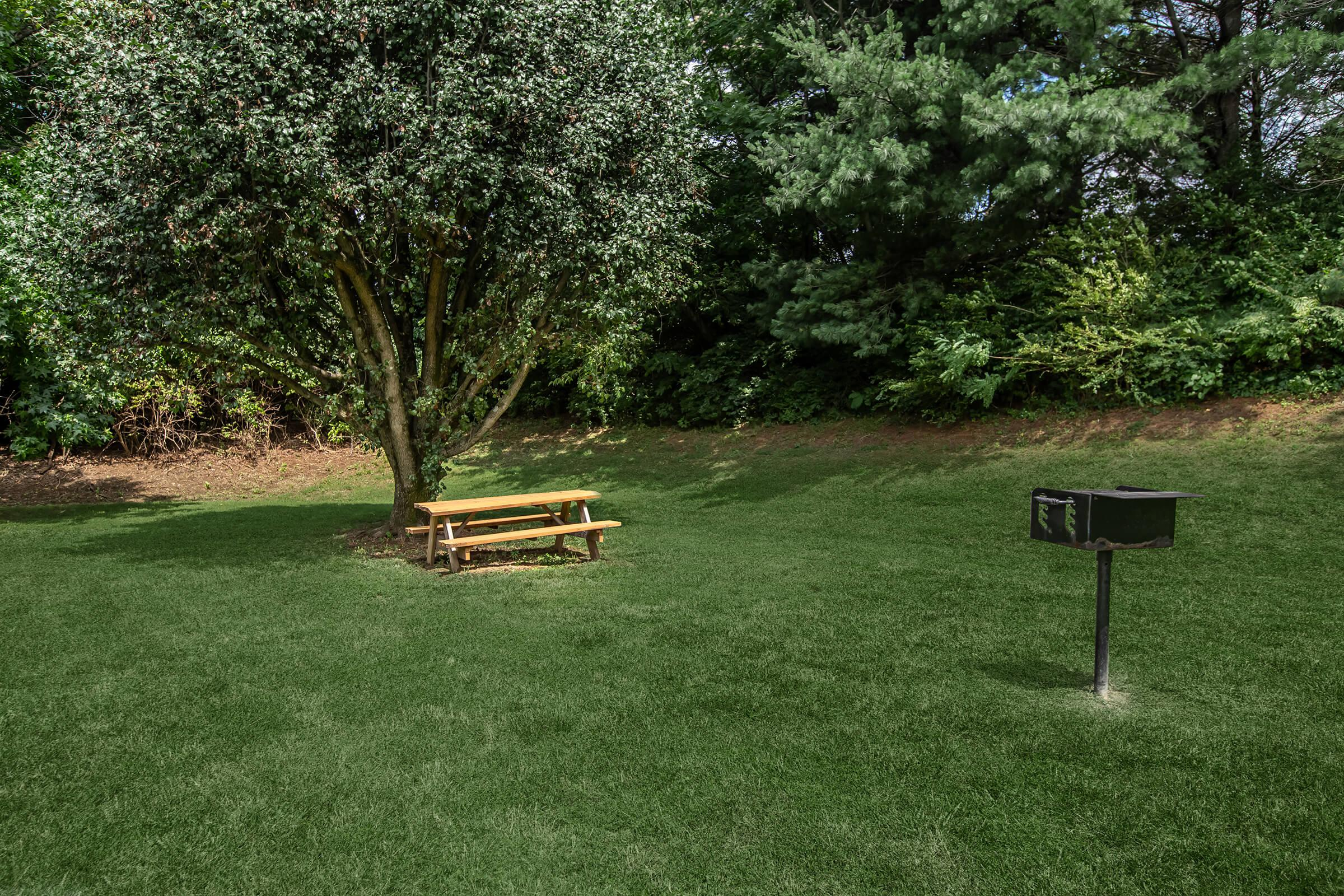Barbecue and picnic area at British Woods Apartments
