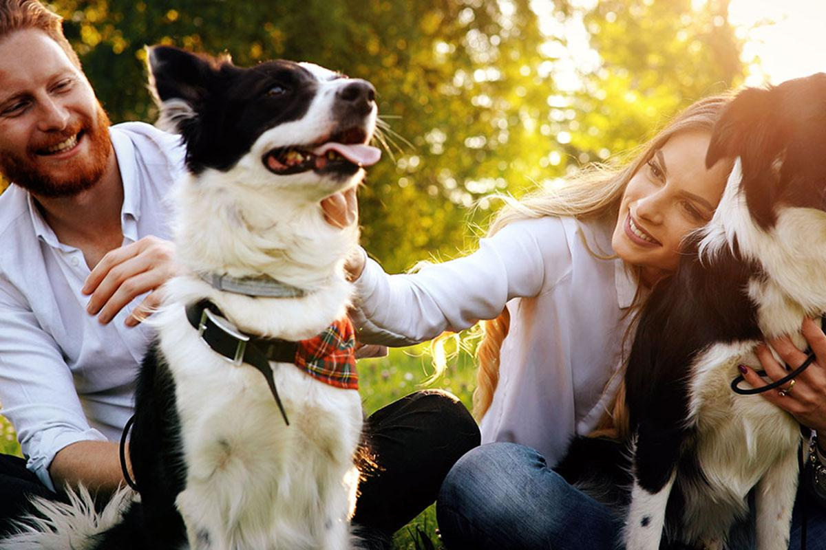 a person holding a dog posing for the camera