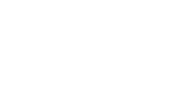 New City Management Logo