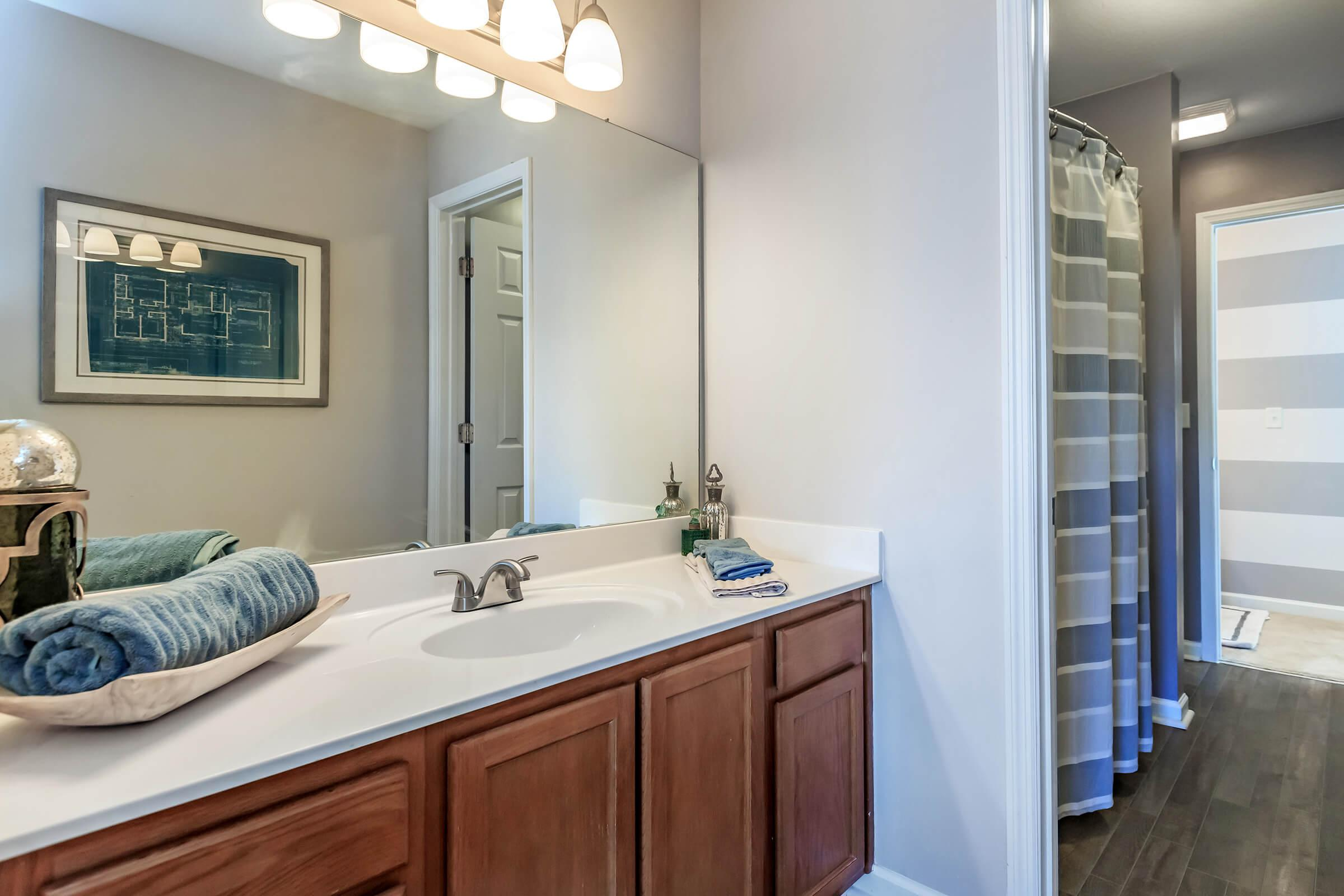 Modern Bathroom at Bluff View at Northside Apartments