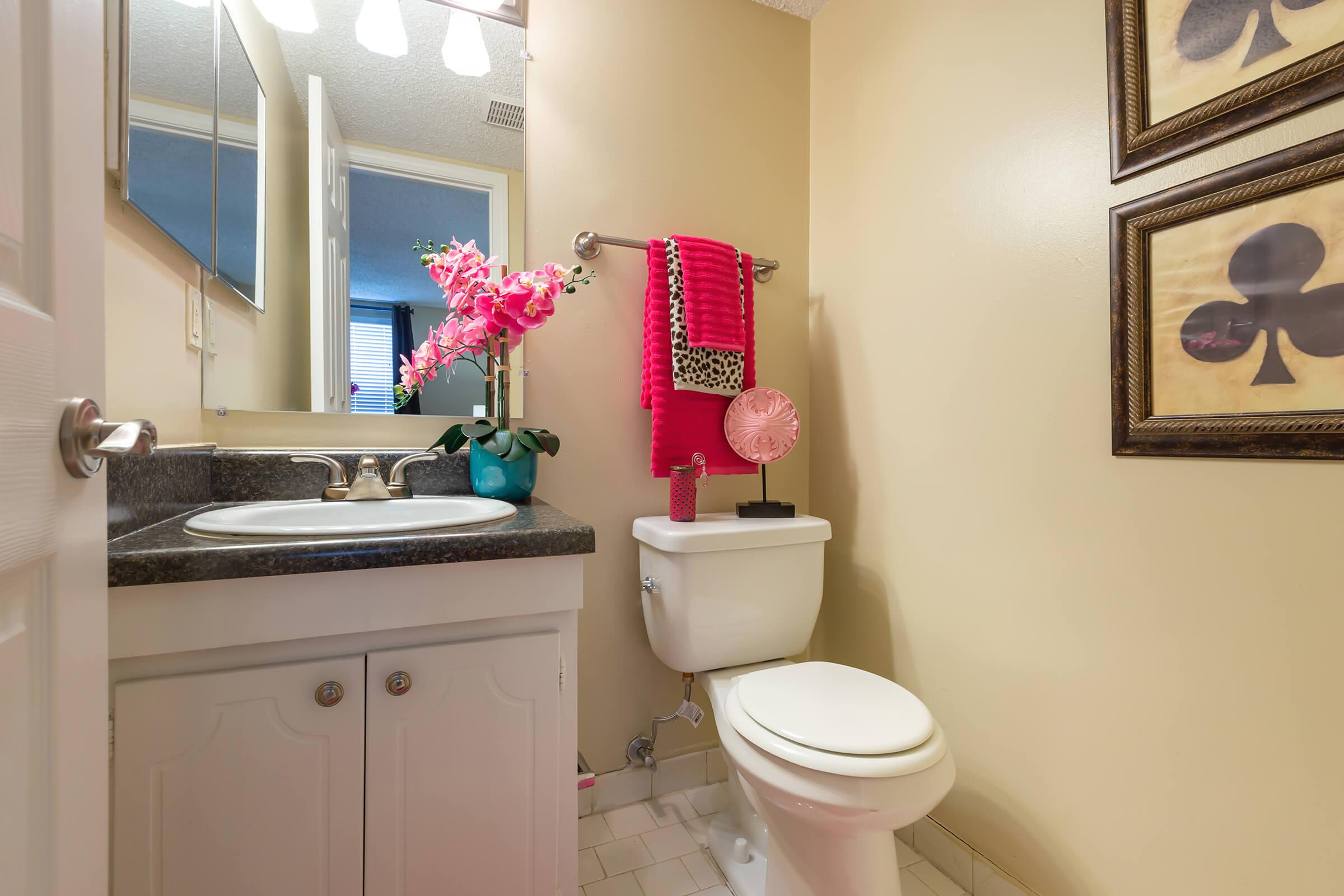 Modern Bathroom Here at Kingston Pointe Apartments in Knoxville, Tennessee