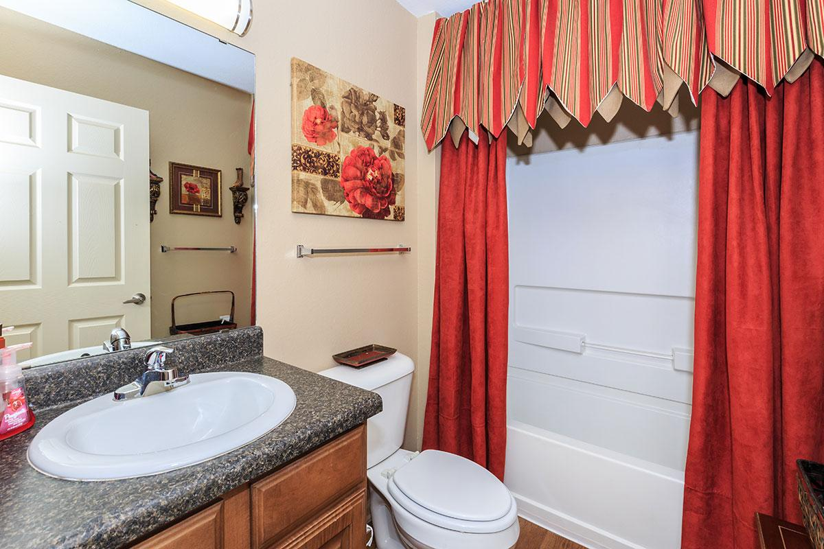 a red and white shower curtain