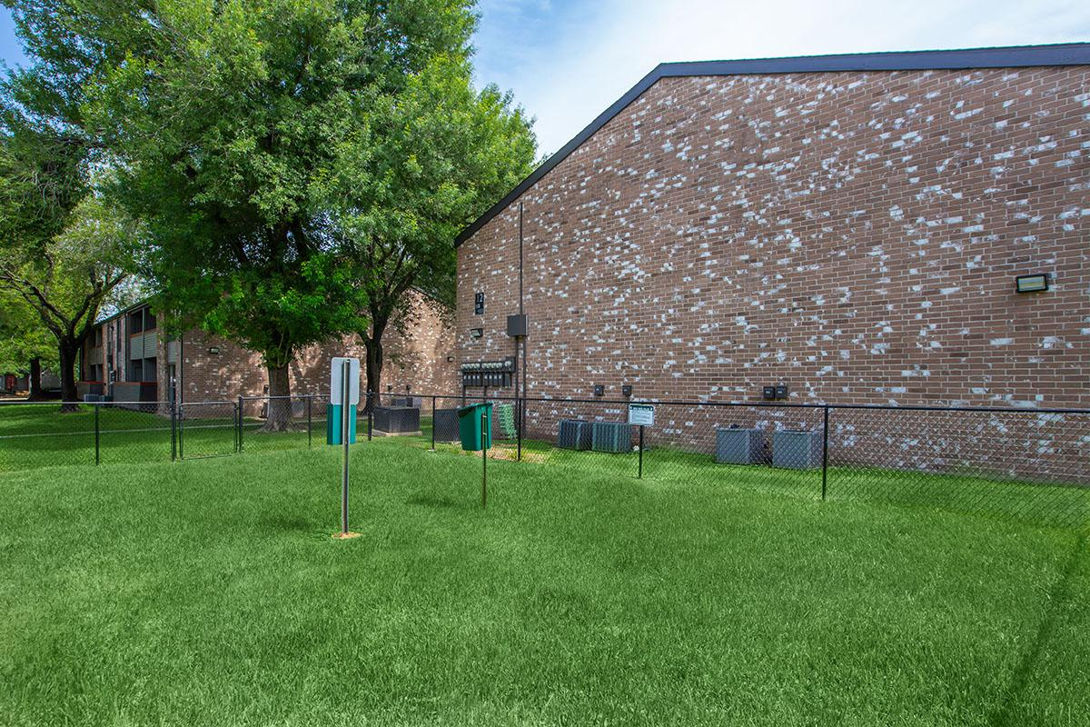 a yard with grass and trees