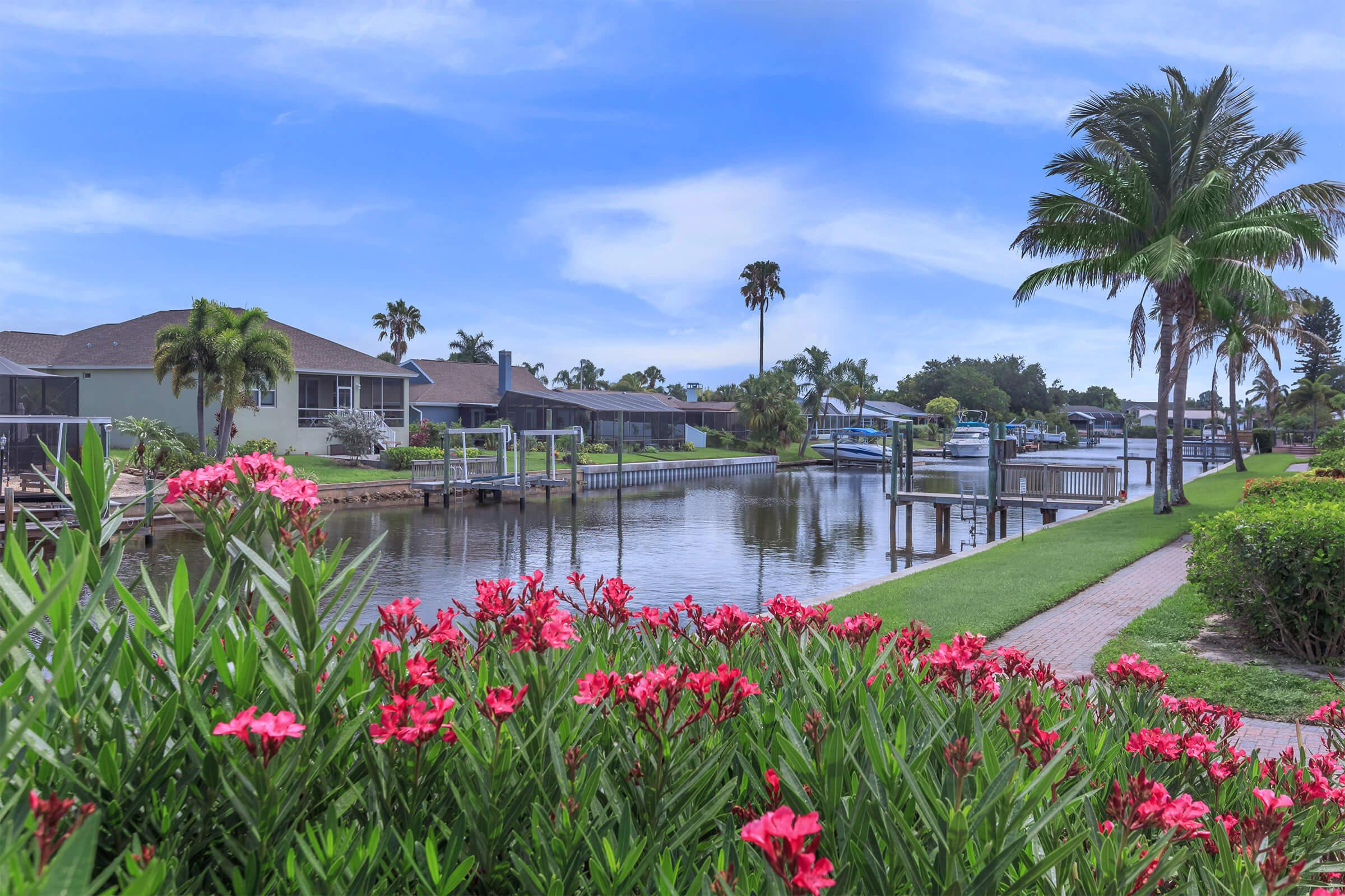 a colorful flower garden in front of a lake surrounded by palm trees