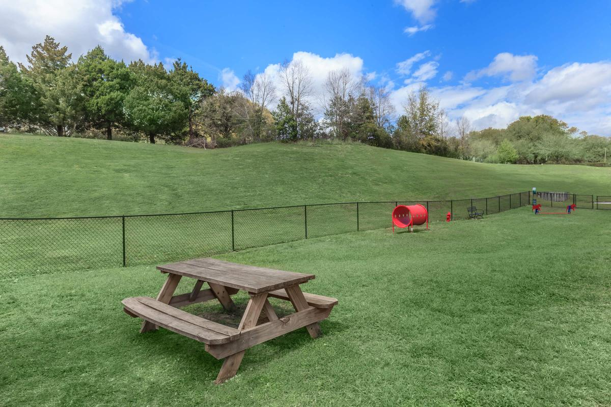 a wooden bench sitting on top of a lush green field