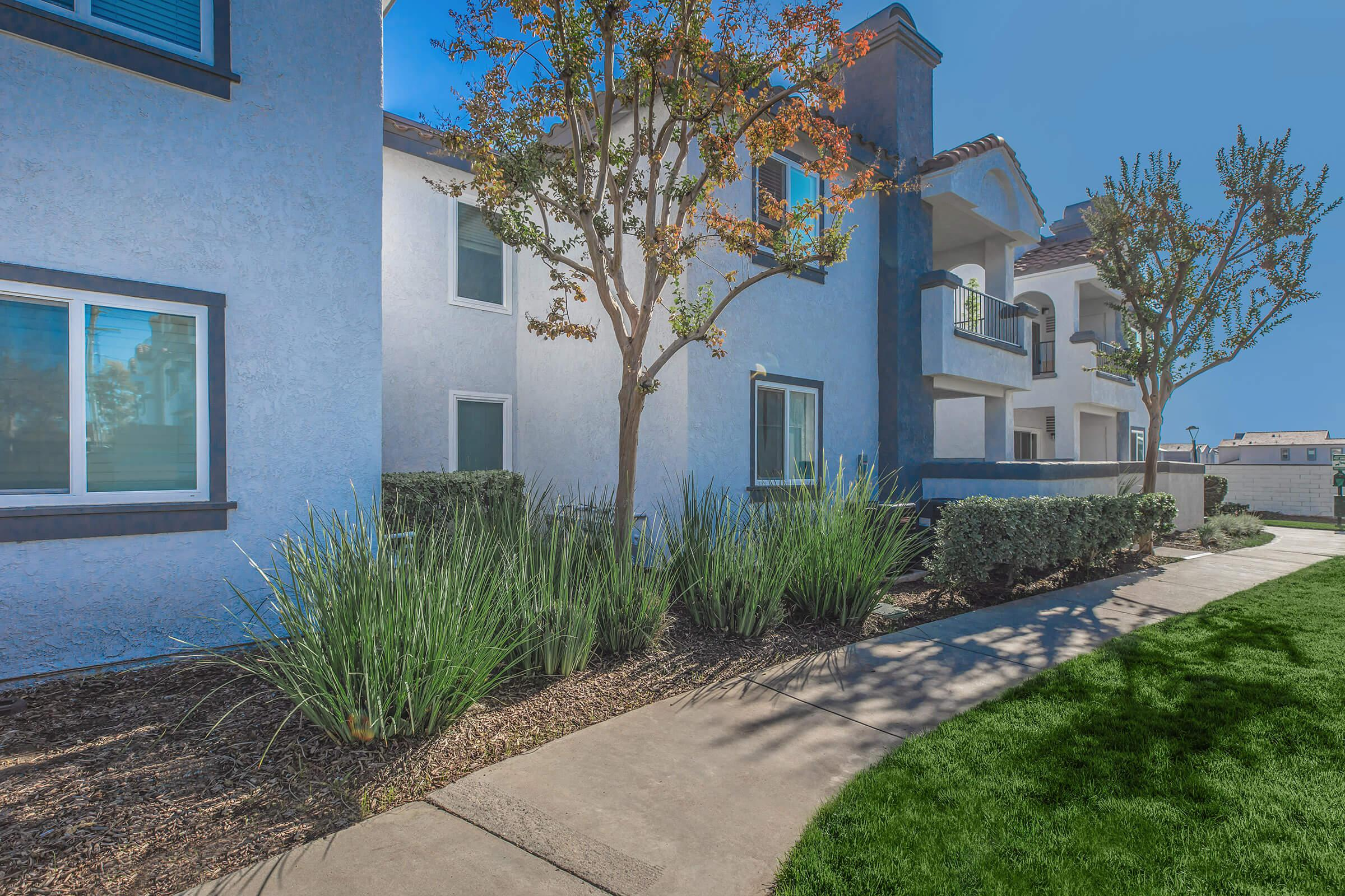 Landscaping at Enclave at Town Square Apartments in Chino, CA