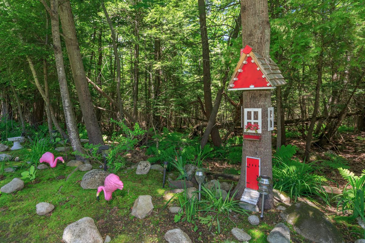 a red fire hydrant in the middle of a forest
