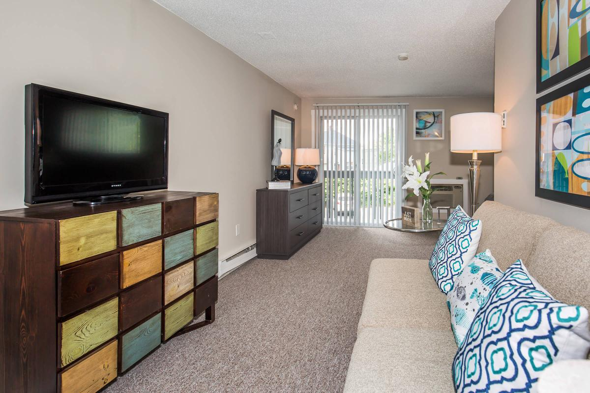 a living room filled with furniture and a flat screen television
