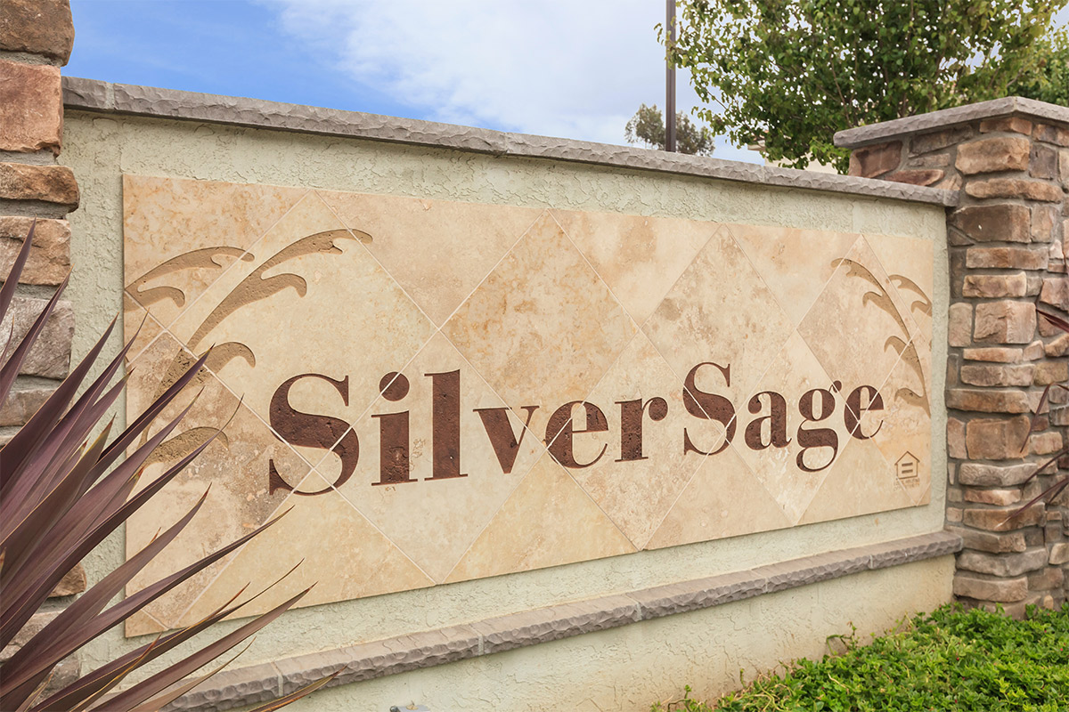 Picture of Silver Sage