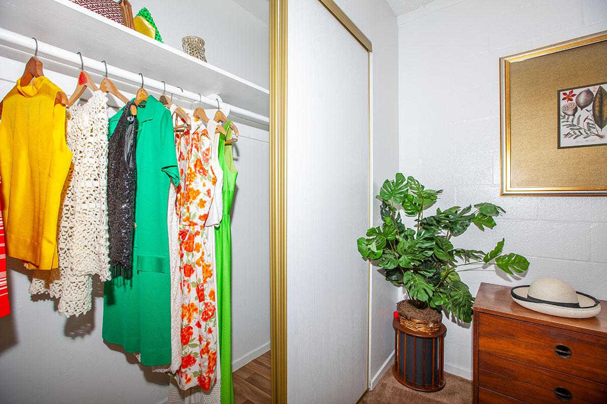 SPACIOUS CLOSETS AT THE PALMS APARTMENTS IN LAS VEGAS