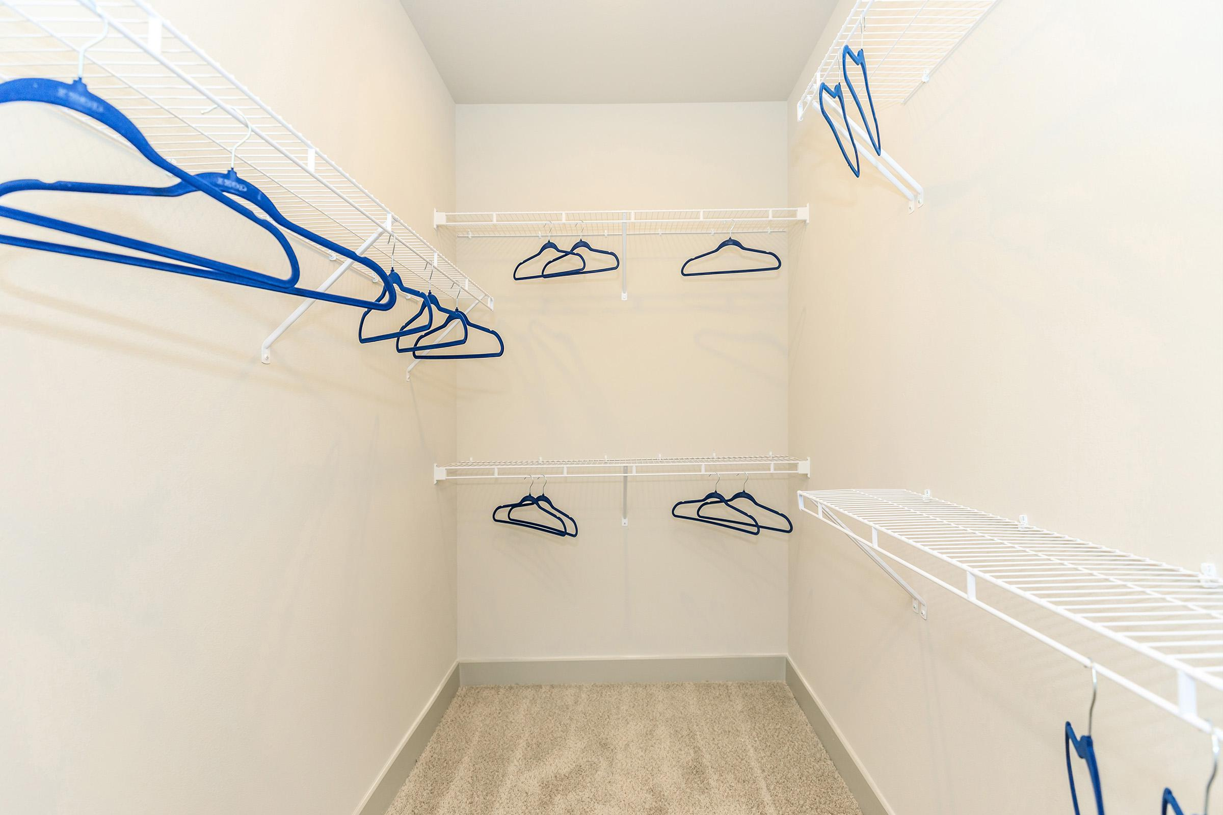 Large walk-in closets at Ariza Gosling in Spring, TX