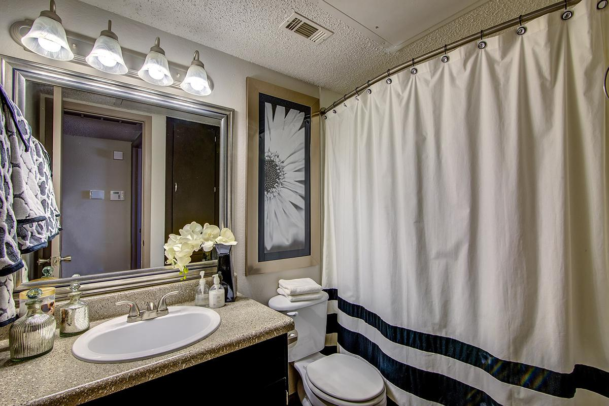 a double sink and shower curtain