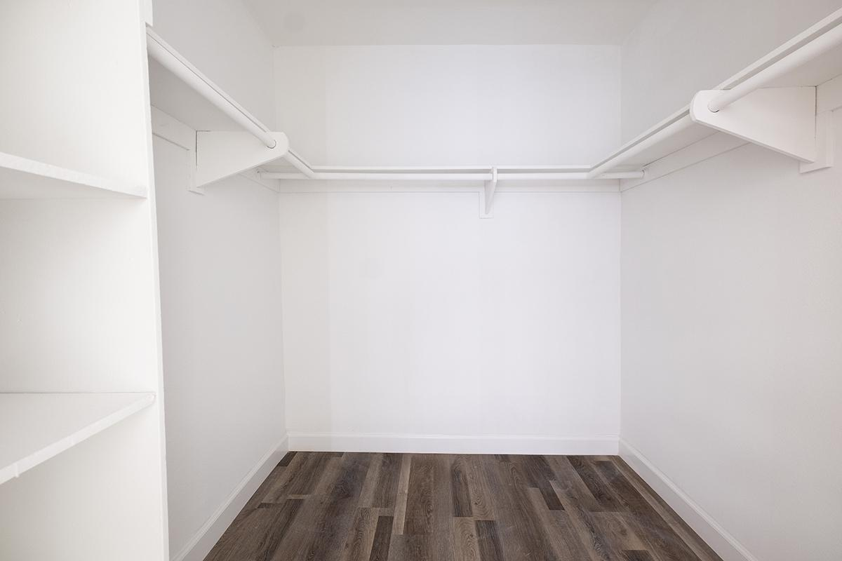 Walk-in Closet with hardwood floors
