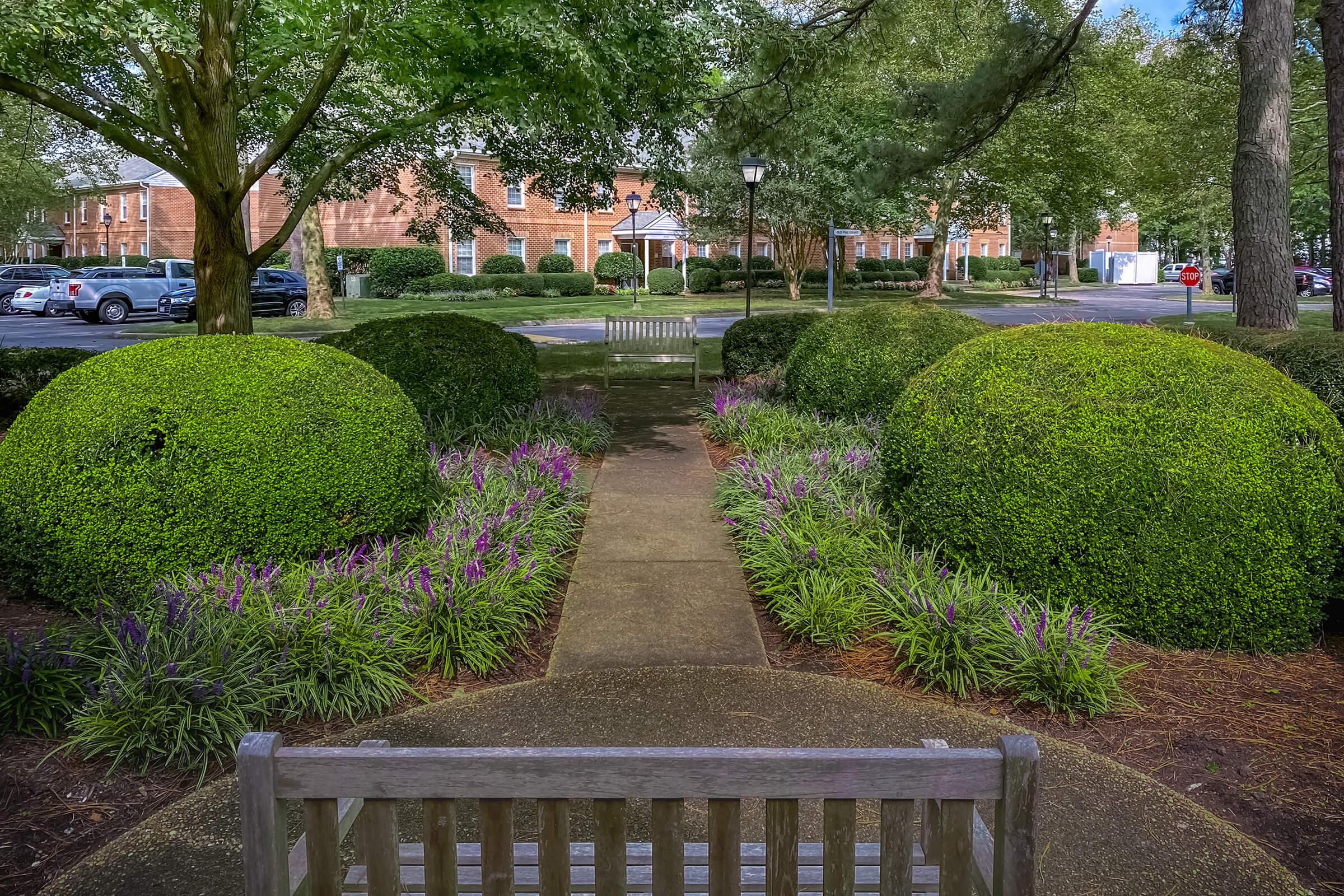 a row of park benches in a garden