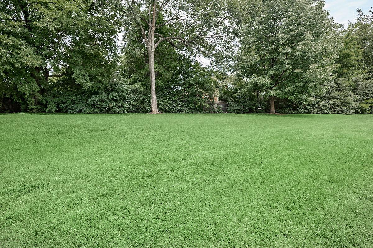 Expansive Greenery