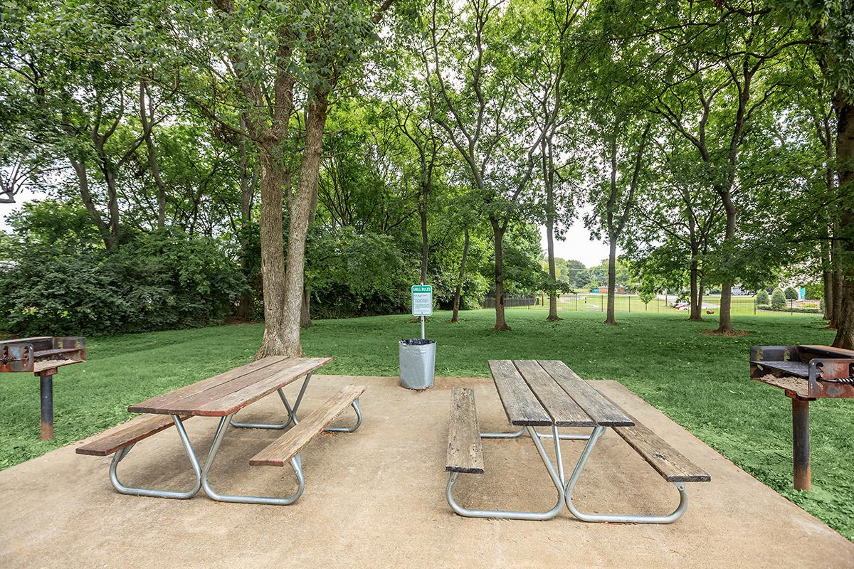 Picnic Area with Barbecue