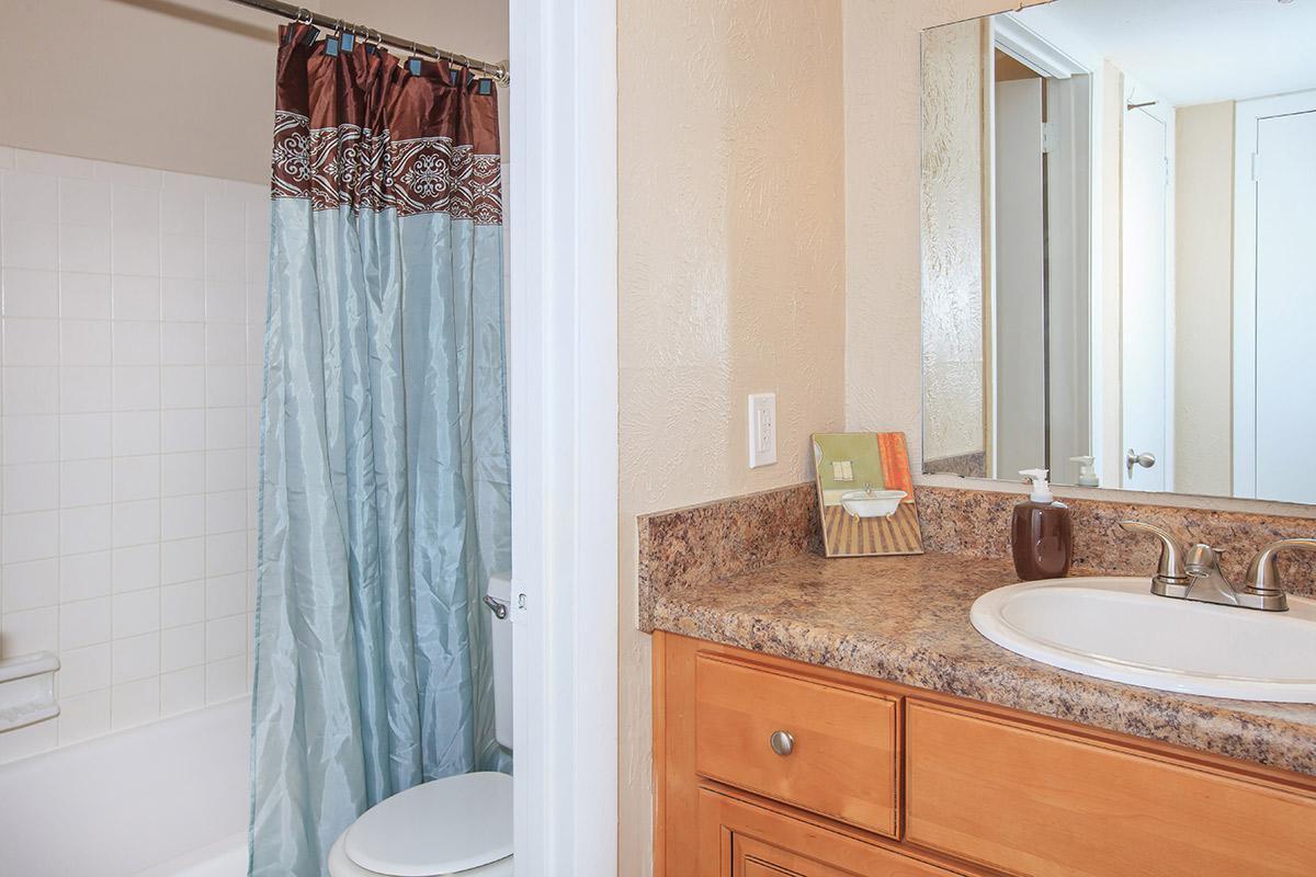 Shower Tub in Bathroom