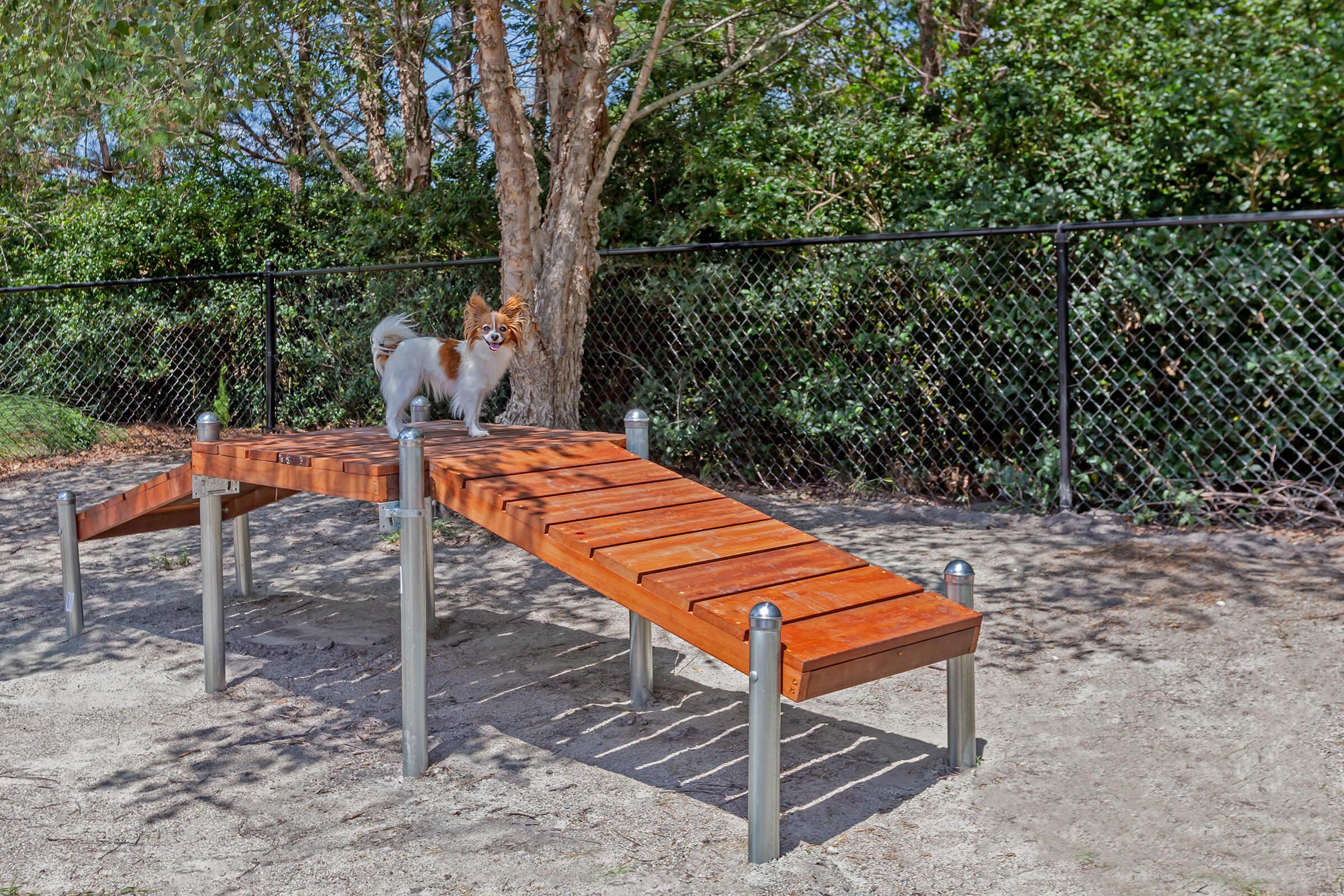 We Are Pet-friendly At New Providence Park In Wilmington, NC