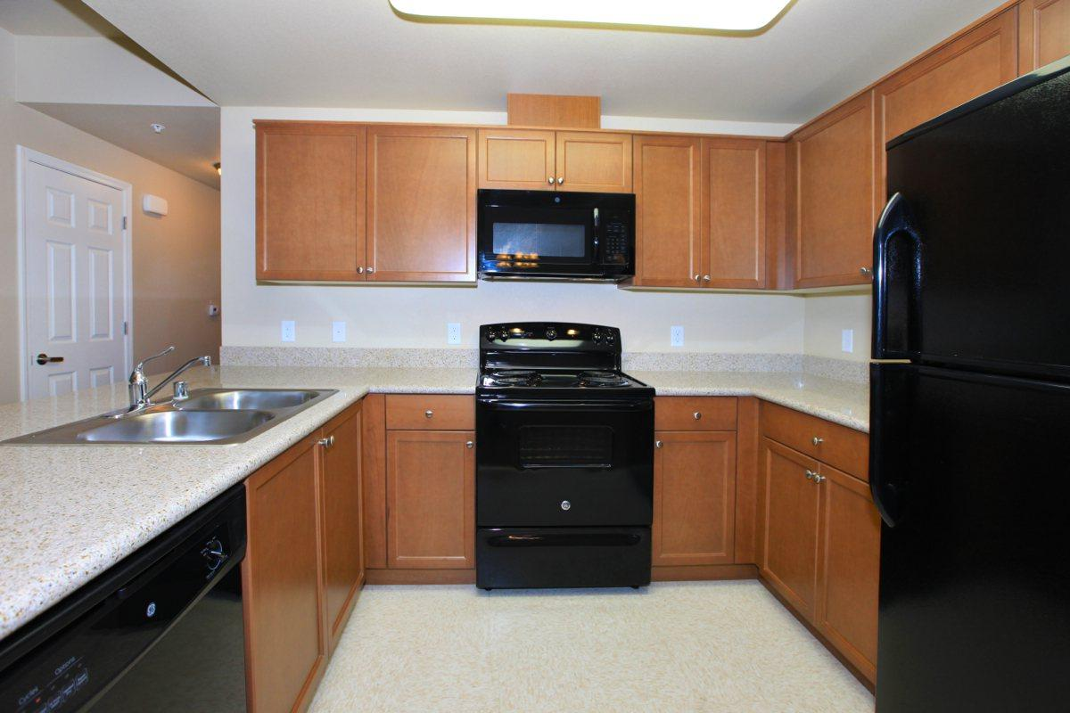 All-electric kitchens are provided to you at Greystone Apartments