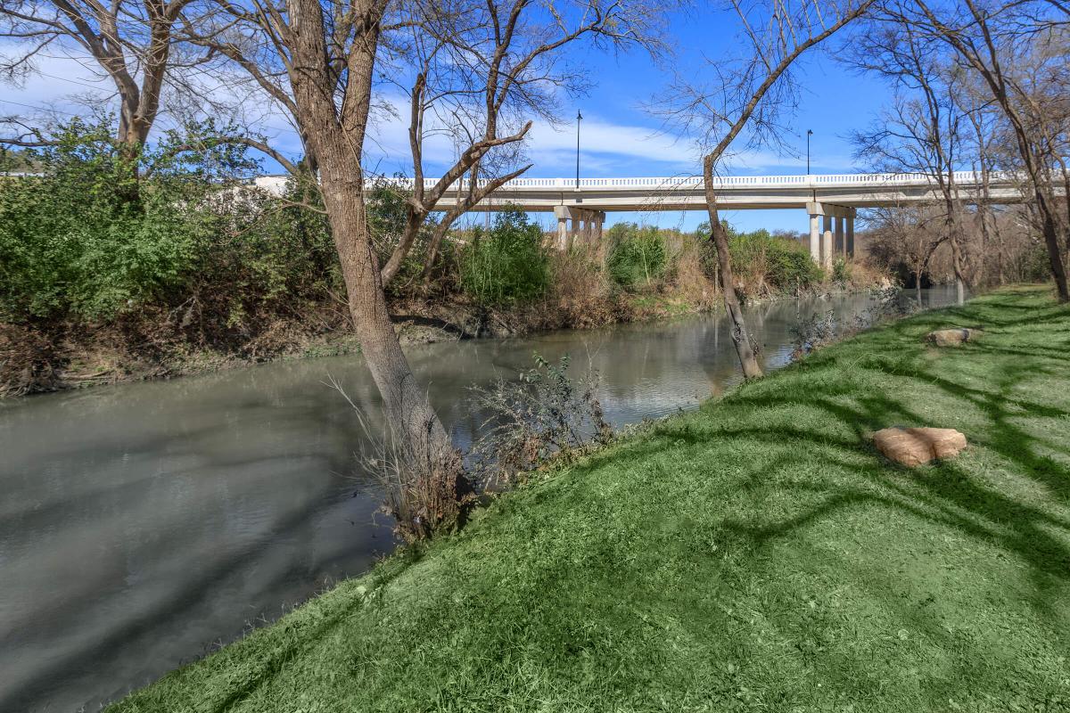 a river running through a park