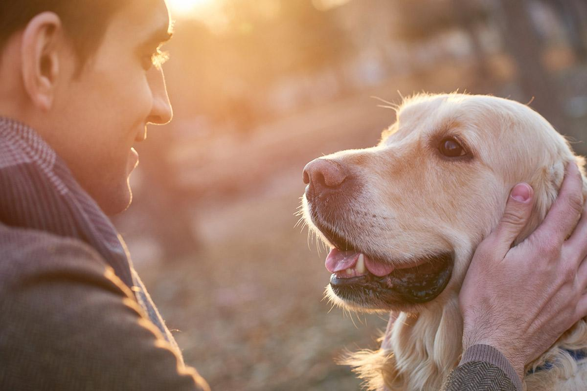 a close up of a person and a dog looking at the camera