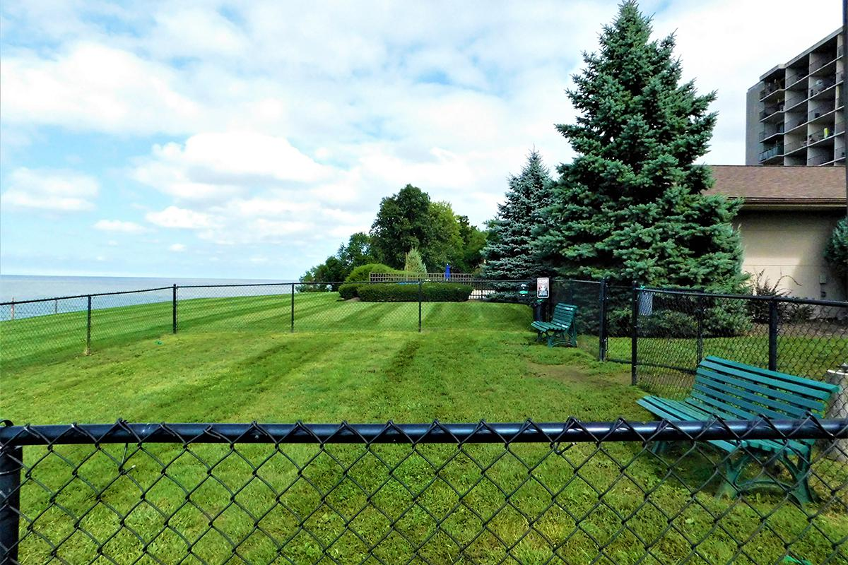 a fenced in area
